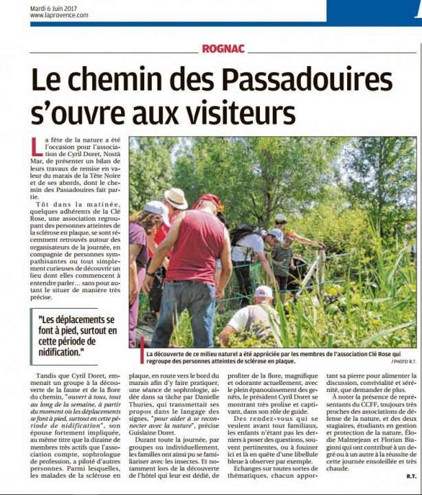 FDN 60617 La Provence